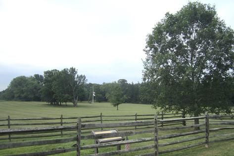 The beloved Mercer Oak at Princeton Battlefield State Park